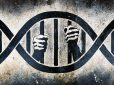 Innocence Project in the pitfall of criminal justice system
